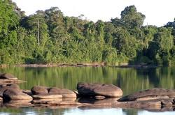Danpaati River Logde2